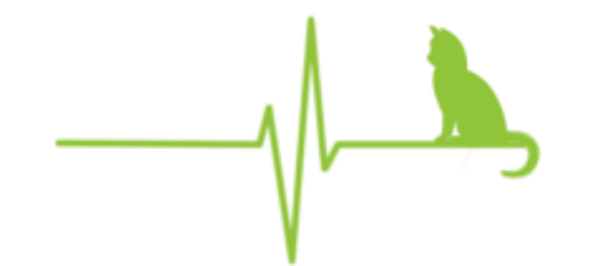 cropped-cropped-Logo-EK-transparent_grün-4.png