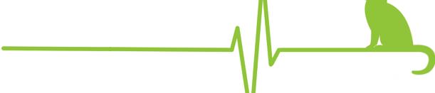 cropped-cropped-Logo-EK-transparent_grün_groß2-2.png