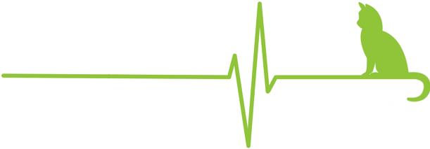 cropped-cropped-cropped-cropped-Logo-EK-transparent_grün_groß2-1.png